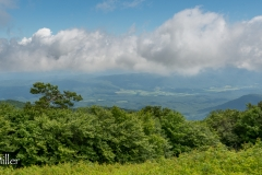 Cades Cove from Gregory Bald
