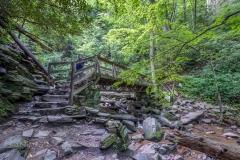 observation bridge for Mingo Falls