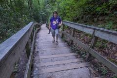 steps to Mingo Falls